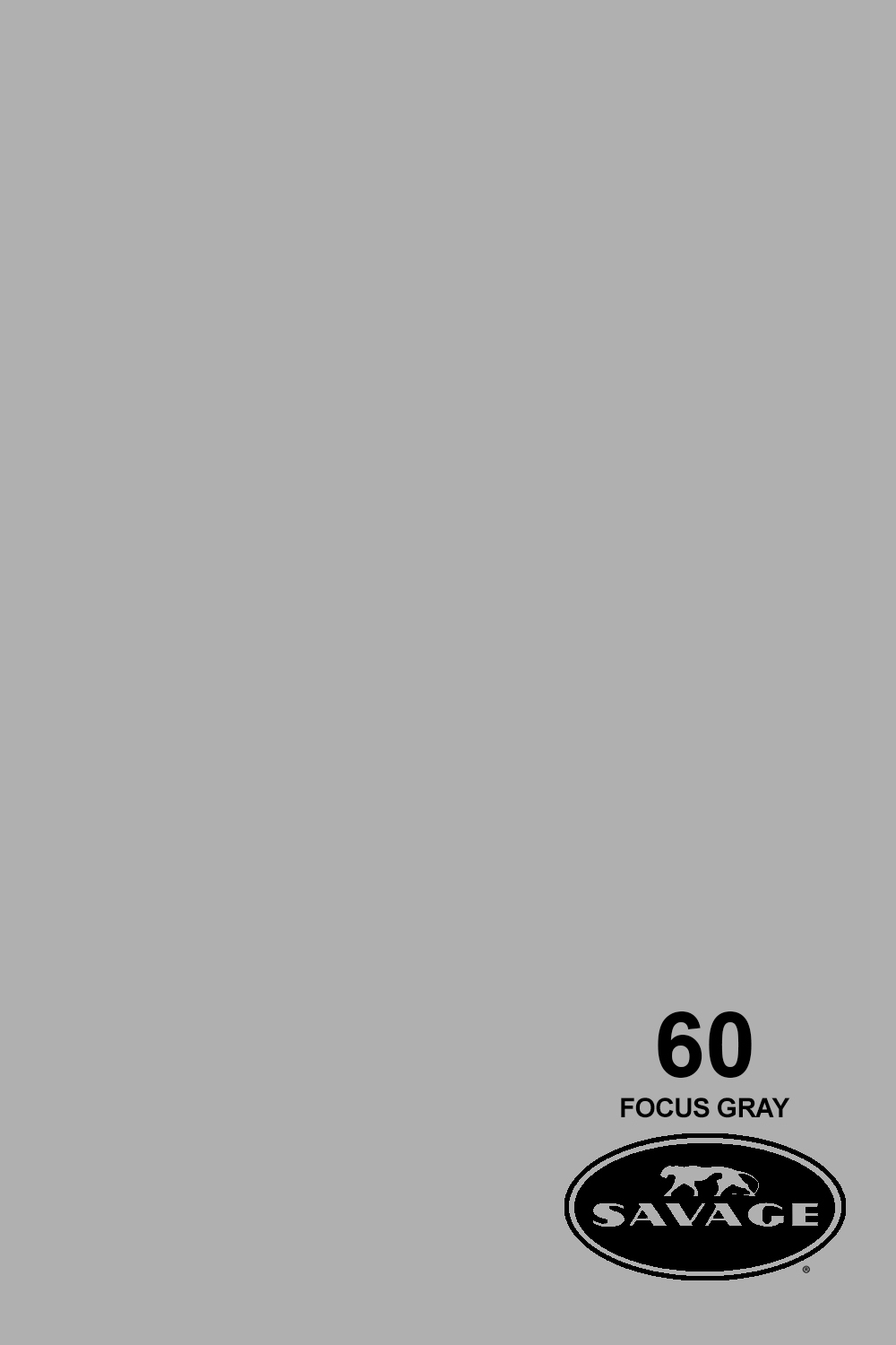 Focus Gray Seamless Paper 2.72X11mm