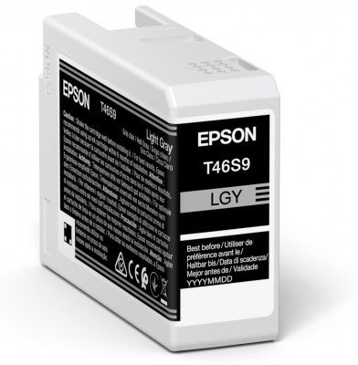 Epson T46S9 Light Grey Ink Cartridge (25ml) C13T46S900